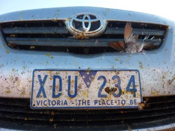 road trip australis pare choc