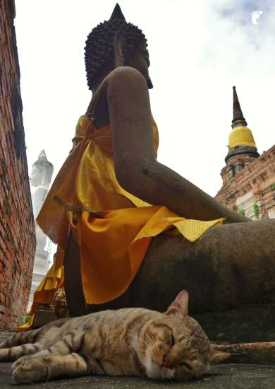 Ayutthaya-33