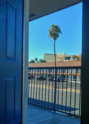 Palmier et ciel bleu pour réveil au Motel