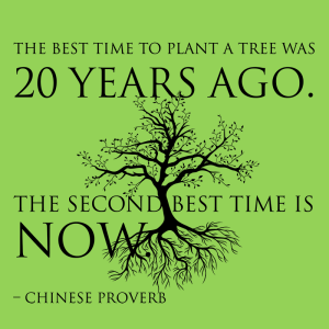the_best_time_to_plant_a_tree_is_20_years_ago_1024x1024
