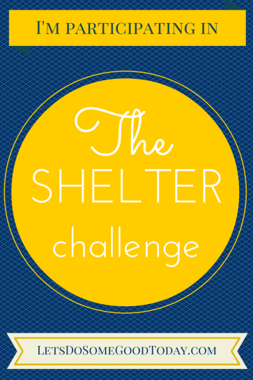 The shelter challenge