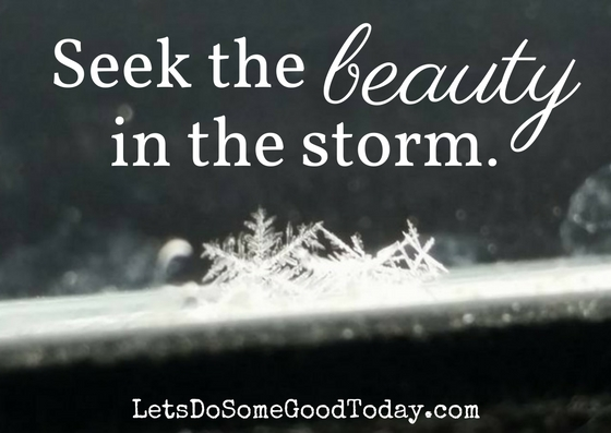 seek-the-beauty-in-the-storm