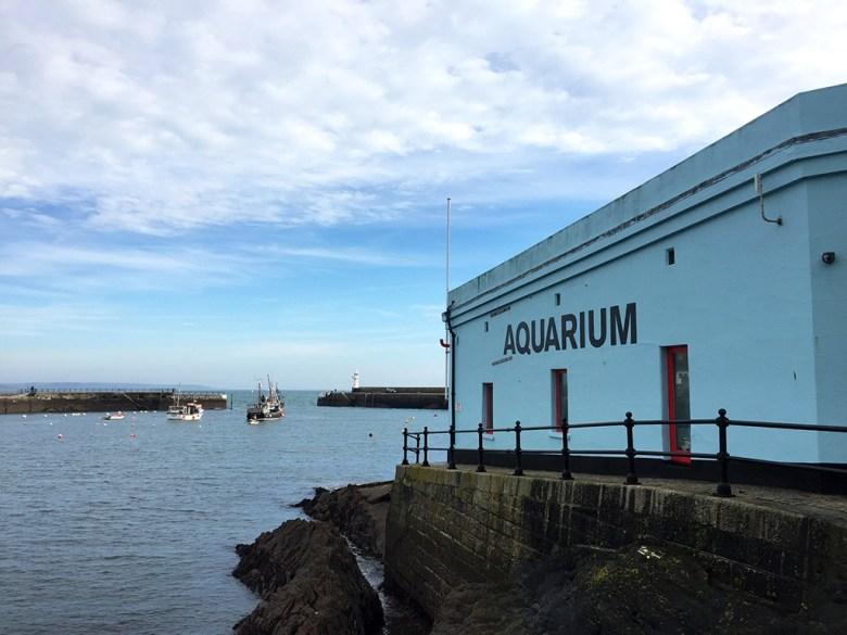 Aquarium in Mevagissey