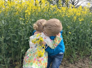 Yellow fields of family fun