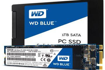 Western Digital, yeni SSD'lerini tanıttı!