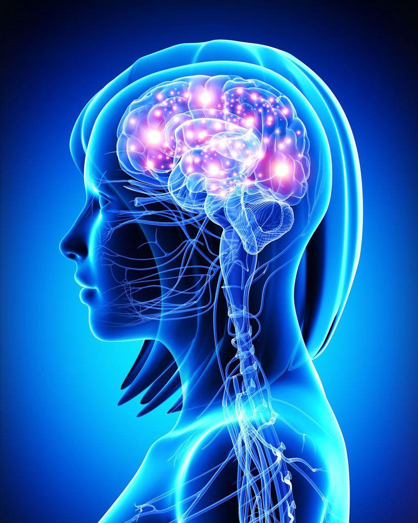 La Farmacia del Cerebro