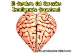 inteligencia-del-corazon-inteligencia-creacional