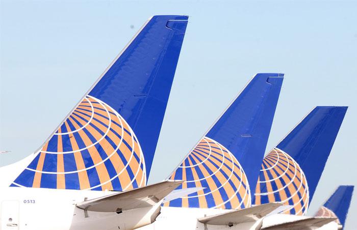 United Airlines, morto cucciolo di cane costretto a viaggiare in una cappelliera