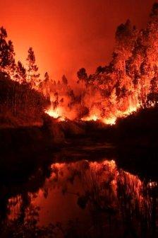 incendio-pedrogao-portogallo