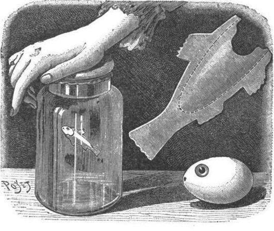 El pez inteligente