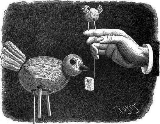 El pájaro en la rama