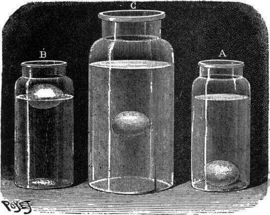 El huevo en agua salada