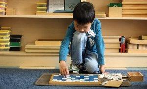 Montessori Eğitmeni montessori eğitmeni Montessori Eğitmeni montessori1