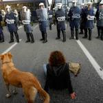 07-The Story of Loukanikos and Other Greek Riot Dogs