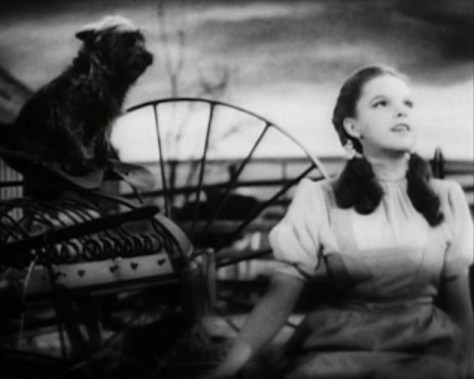 By Trailer screenshotLicencing information:http://www.creativeclearance.com/guidelines.html#D2 - The Wizard of Oz 1940 Cairo trailer available on the 2005 Three-Disc Collector's Edition DVD release, Public Domain, https://commons.wikimedia.org/w/index.php?curid=16514146