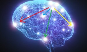 how-words-restructure-brain