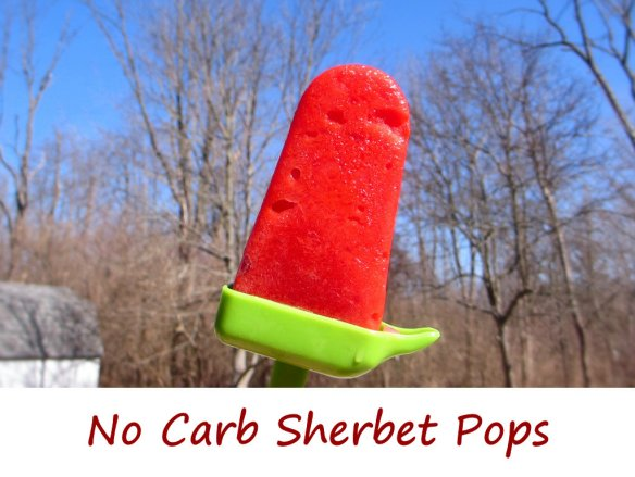 No Carb Sherbet Pops