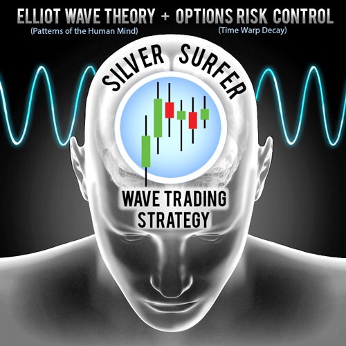 silver surfer lifestyle trading 101 waves