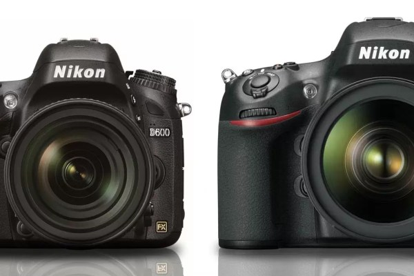 Size comparison of Nikon D600 and Nikon D800.