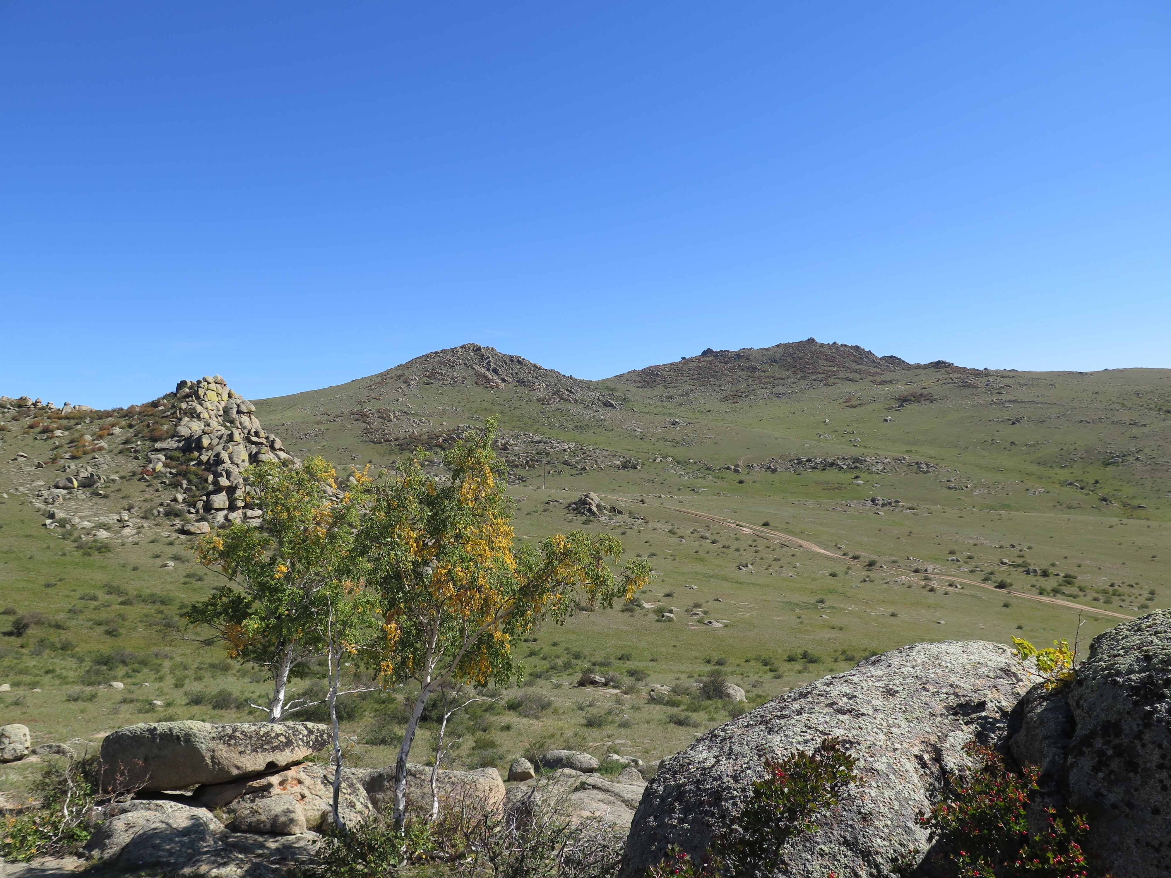 Just one of many beautiful landscapes. This is the view back down to the truck from where we observed the takhi.