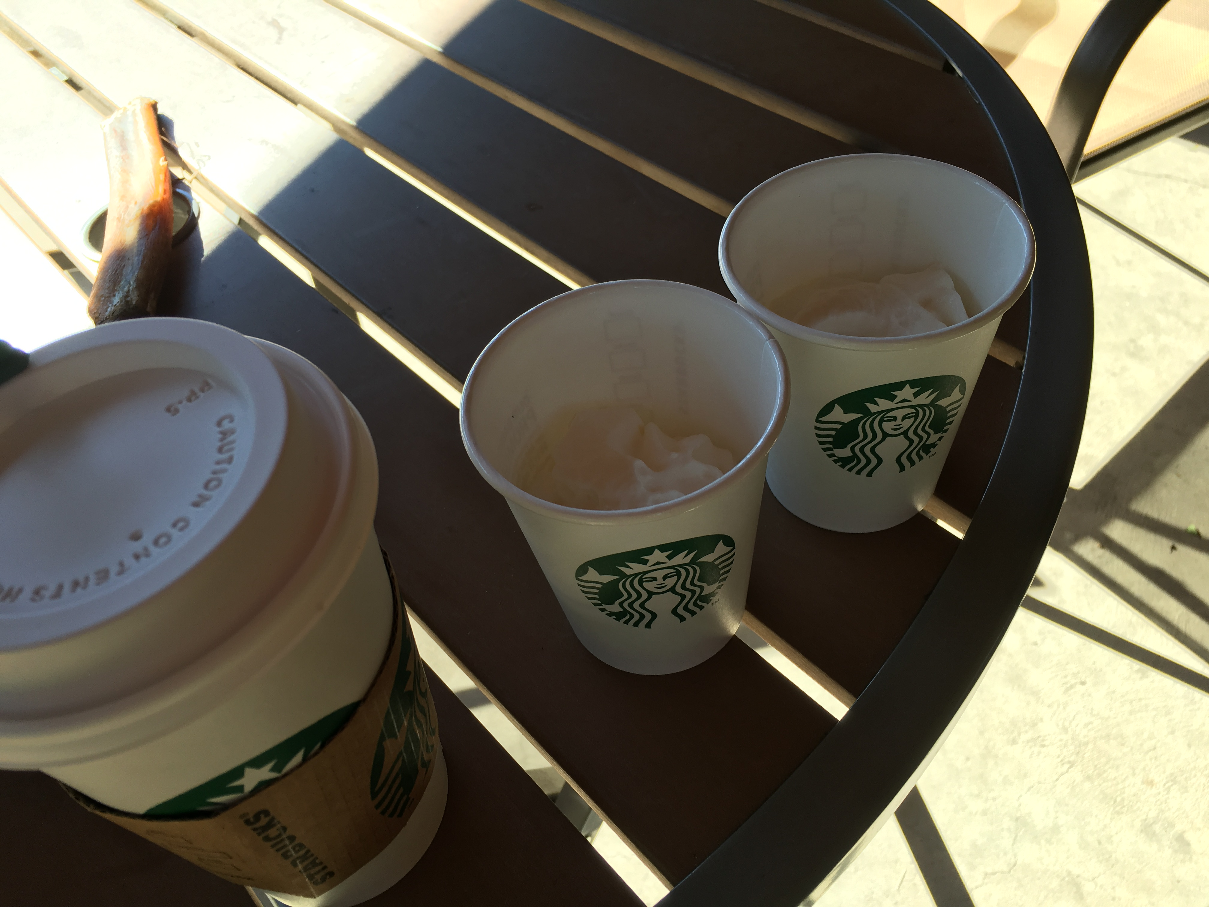 The puppaccino: a small cup of whipped cream for your pooch, courtesy of Starbucks.