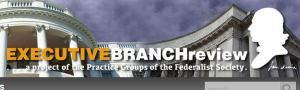 Executive Branch Project Logo