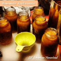 Applesauce Made with Cinnamon, Honey and Love