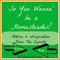 So You Wanna' Be A Homesteader?  Advice & Inspiration From The Experts