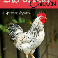 Giveaway & Book Review:  The Urban Chicken by Heather Harris