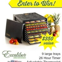 HUGE!!! Excalibur 9-tray Dehydrator Giveaway