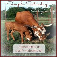 Simple Saturdays Blog Hop #63