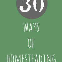 Why We Love Small Space Homesteading In Suburbia