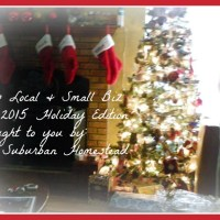 Shop Local & Small Biz - The 2015 Holiday Edition