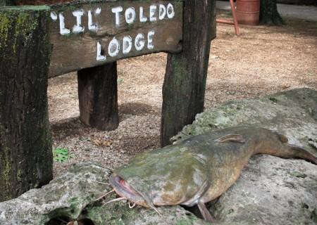 Cat Fishing Kansas Lodge (7)