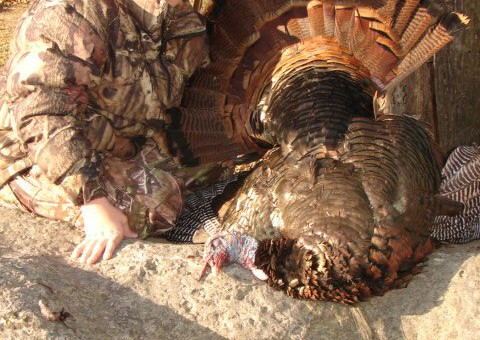 Eastern Turkey Hunts Kansas Outfitter (9)