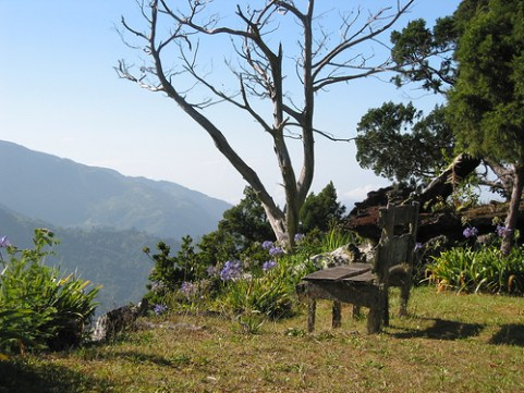 Secret Garden, Cinchona Botanical Gardens