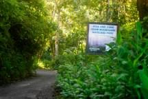 John Crow National Park Jamaica