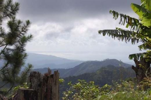 Blue Mountain Hiking