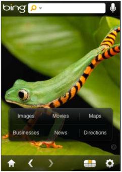Bing i iPhone