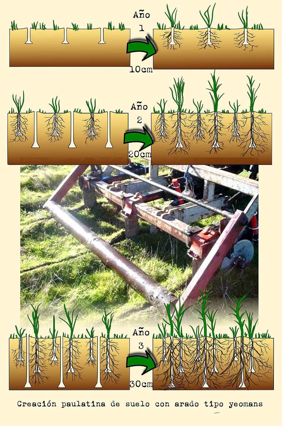 Utilización eficiente del agua con Línea Clave