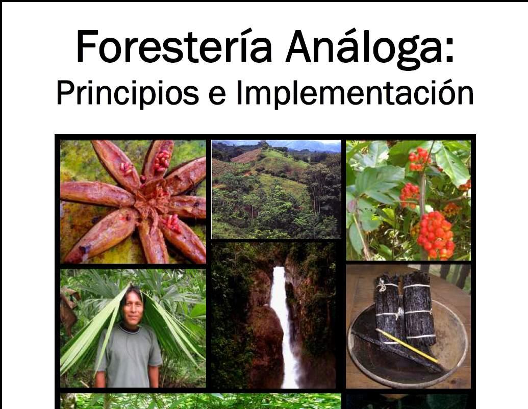 Forestería Análoga: Principios e Implementación