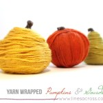 Yarn Wrapped Pumpkins and Gourds