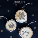 Glittery Wood Slice Ornaments – Persia Lou