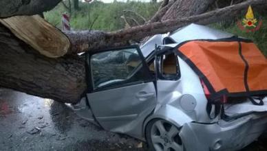 Maltempo: albero su auto ad Ardea (Roma), 2 morti