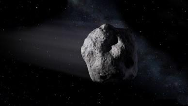 asteroidee