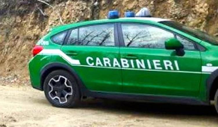 carabinieri forestale 3