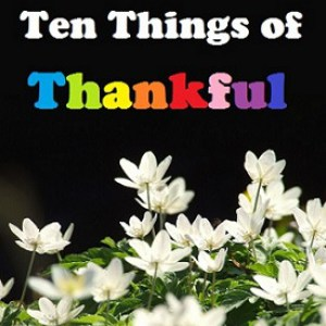 Ten Things of Thankful Banner