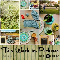 TWiP: Blues and Greens