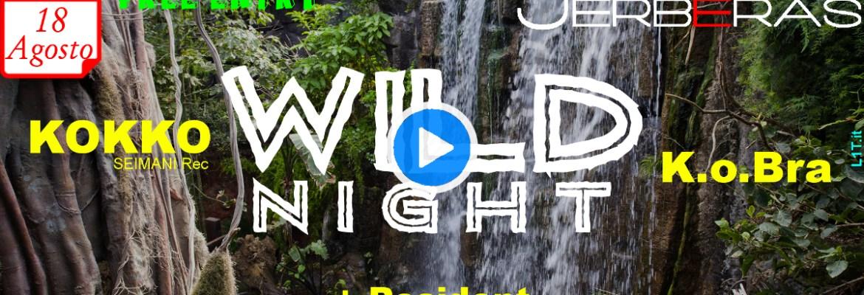 Wild Night 4.0 @ Jerbéras