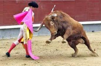 bullfighter 2 (1)